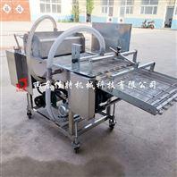 小型加工厂使用的全自动鸡排裹浆机