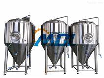 100-2000L啤酒發酵罐