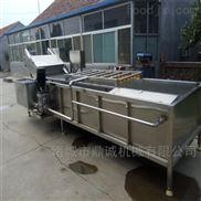 蔬菜前处理生产线  蔬菜清洗机