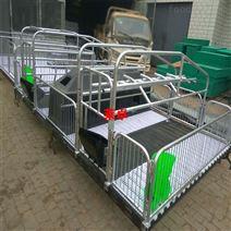 產床 養豬設備 萊卓農牧支持定制各種規格