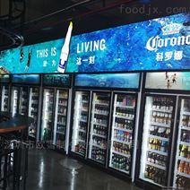 广州欧雪供应冷柜KTV商场冷柜