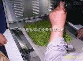 重庆微波茶叶干燥杀青设备