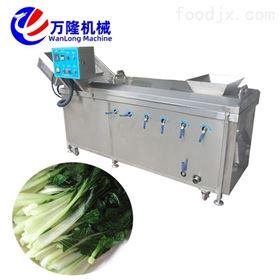 PT-22直销推荐青豆菊花蚕豆蒸煮机设备