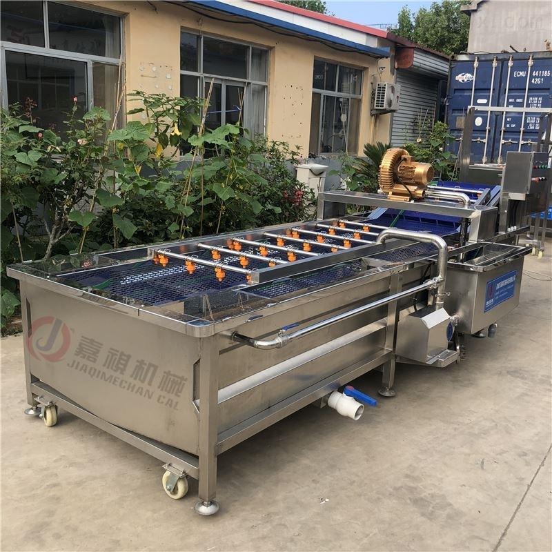 果蔬加工成套設備流水線