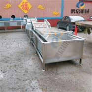 QP5-800小型木瓜清洗机 水果清洗线