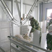 全自动绵羊打毛机多少钱