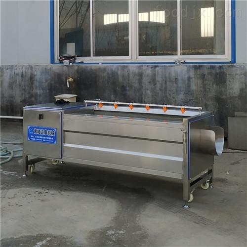 厂家供应土豆毛辊清洗机