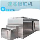 200kg液氮隧道式速冻机