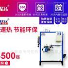 LWS100kg/h 免报检燃甲醇蒸汽发生器