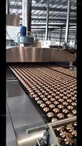 双色扭花曲奇饼干生产线