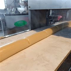 HS-60非自熟米豆腐机质保两年