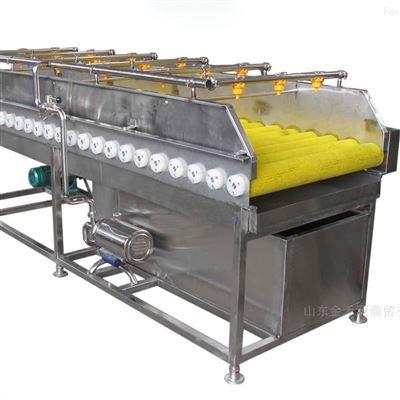 JHY2000蔬菜清洗机全自动清洗流水线