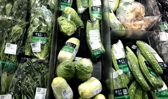 農產品冷鏈發展步入紅利期 行業專業人才缺口待解決