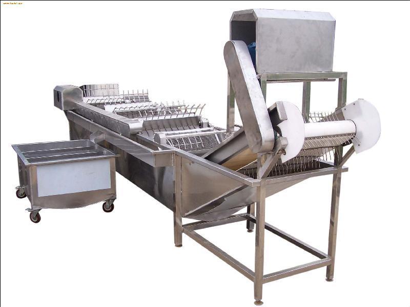 豆芽清洗机1