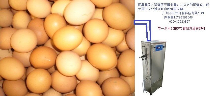 鸡蛋储存间消毒臭氧发生器