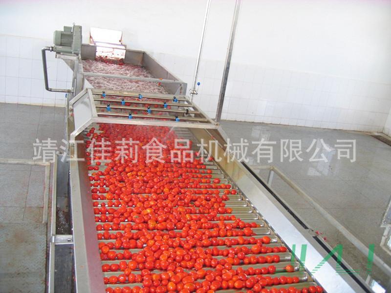 番茄酱前处理生产线设备
