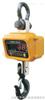 标准上海2吨行车地磅称,电子钩磅,电子钩头秤,电子地磅
