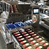HQ-400/600PLC双色曲奇蛋糕一体机 上海PLC曲奇机厂家